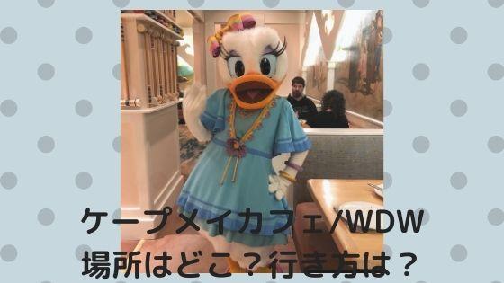 ケープメイカフェ【WDW】場所はどこ?行き方は?おすすめのアクセス方法!